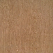 Medium Density Overlay (MDO) Plywood